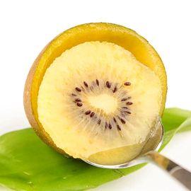 藏美美 四川蒲江黄心猕猴桃  精选中大果(每个70-90g)   新鲜水果 原产地直发 30个( 5斤左右)