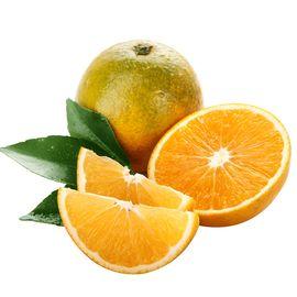 花果鲜 【买5斤送4斤】四川金堂脐橙 当季水果手剥冰糖甜橙子