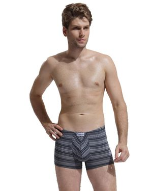 男士内裤 男款平角内裤