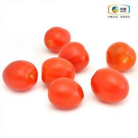 中粮 樱桃番茄380g